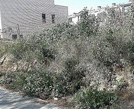 Terrain à bâtir en vente à 500 mètres de la plage de Vilassar de Mar, Maresme