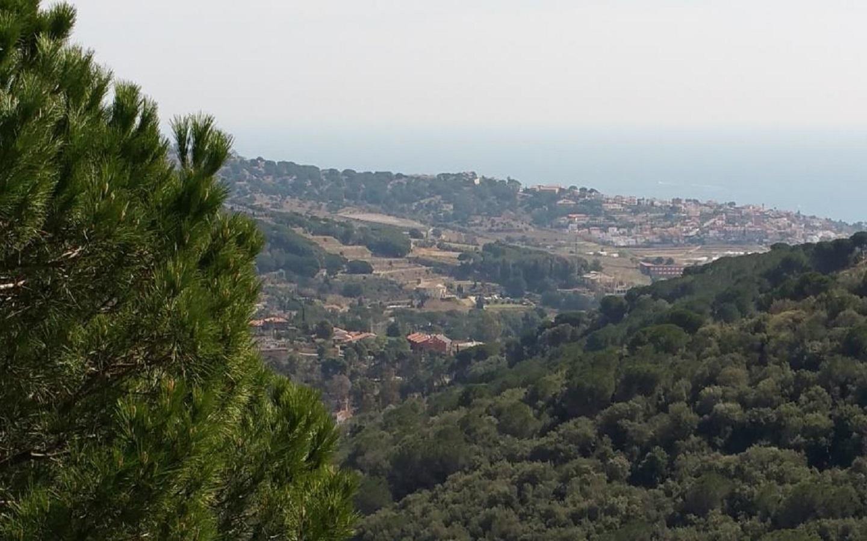 Продажа земельного участка в Alella