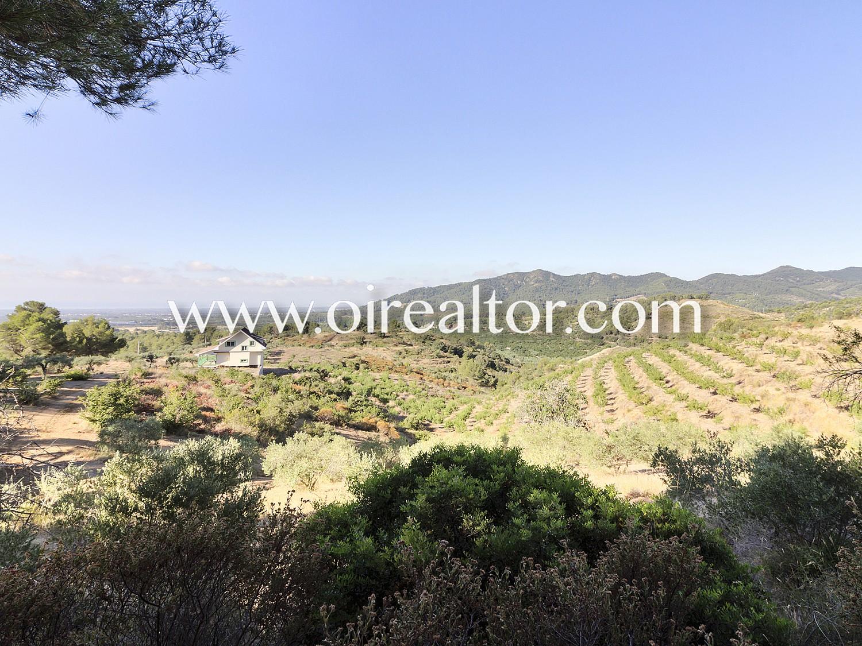 Продается земельный участок 8 ГА в Риудекольс, инвестиции на Коста Дорада