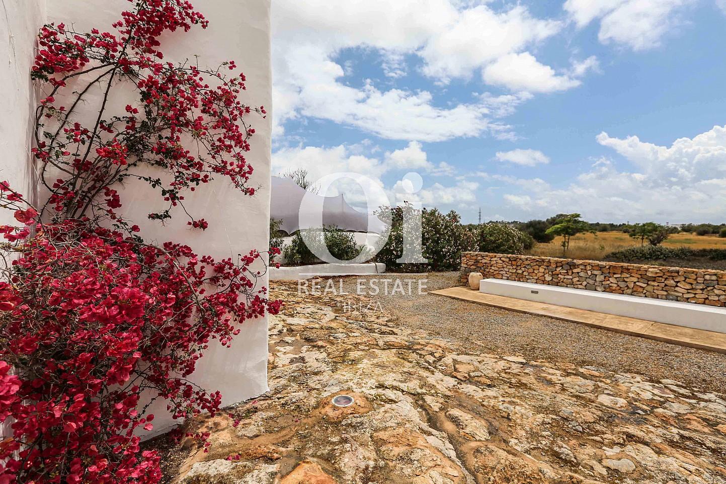 Alrededores de casa en alquiler vacacional en zona Puig d'en Valls, Ibiza