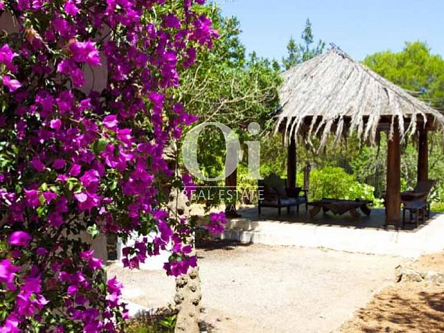 Беседка и красивая растительность во дворе виллы на Ибице в арунду