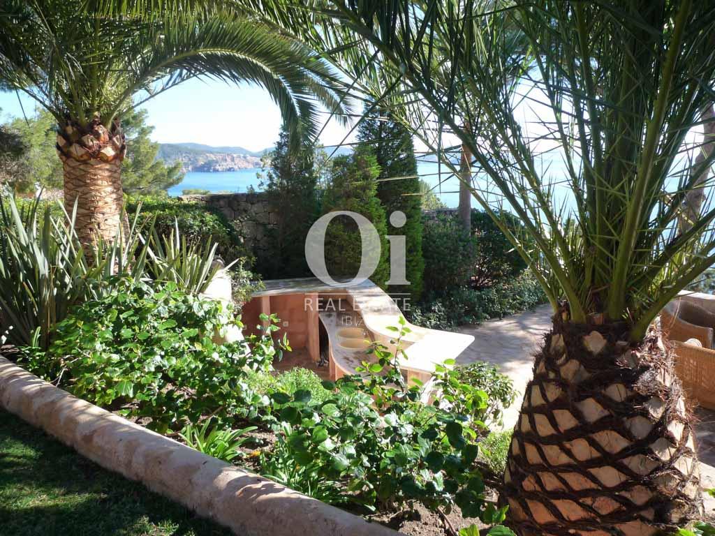 Красивый сад с пальмами при роскошной вилле на острове Ибица, для аренды на время солнечного отпуска