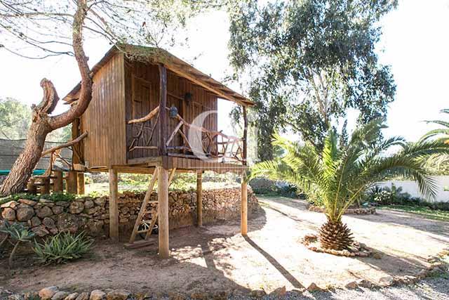 Arbor de magnifico chalet en alquiler en Ibiza