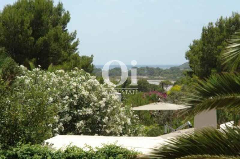 Vistas a la costa y al bosque de casa en alquiler de estancia en Ses Salines, Ibiza