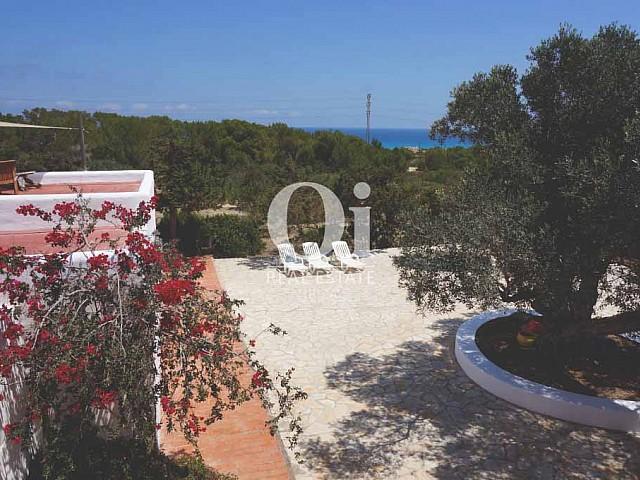 Blick auf die Umgebung der rustikalen Ferienunterkunft auf Formentera