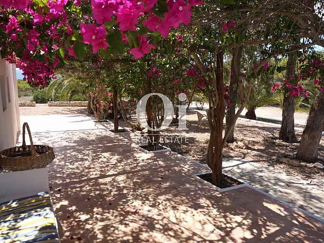 Patio de casa en alquiler de estancia en Formentera