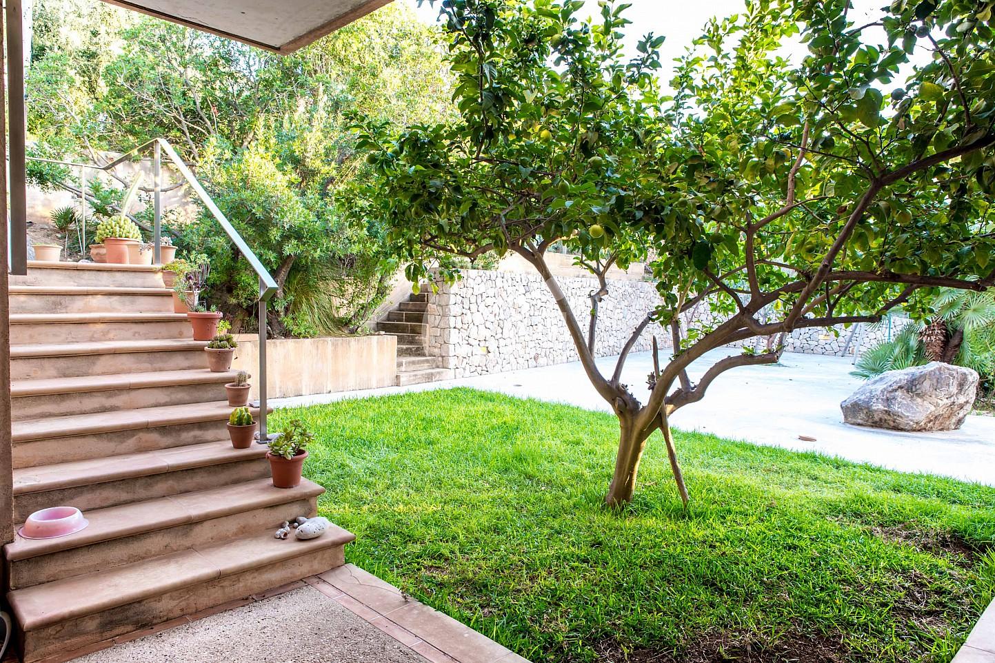 Alrededores de moderna villa en venta en Artá, Mallorca