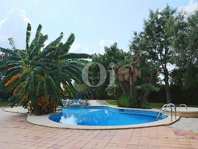 Piscina propia de lujosa villa en venta en San Lorenzo, Mallorca