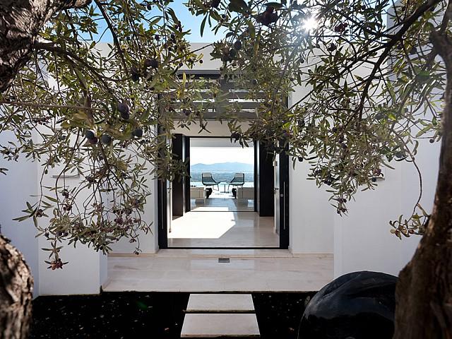 Сад роскошной виллы на Ибице