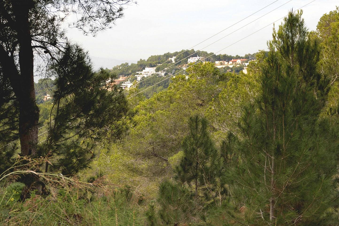 Участок земли на продажу на Ибице