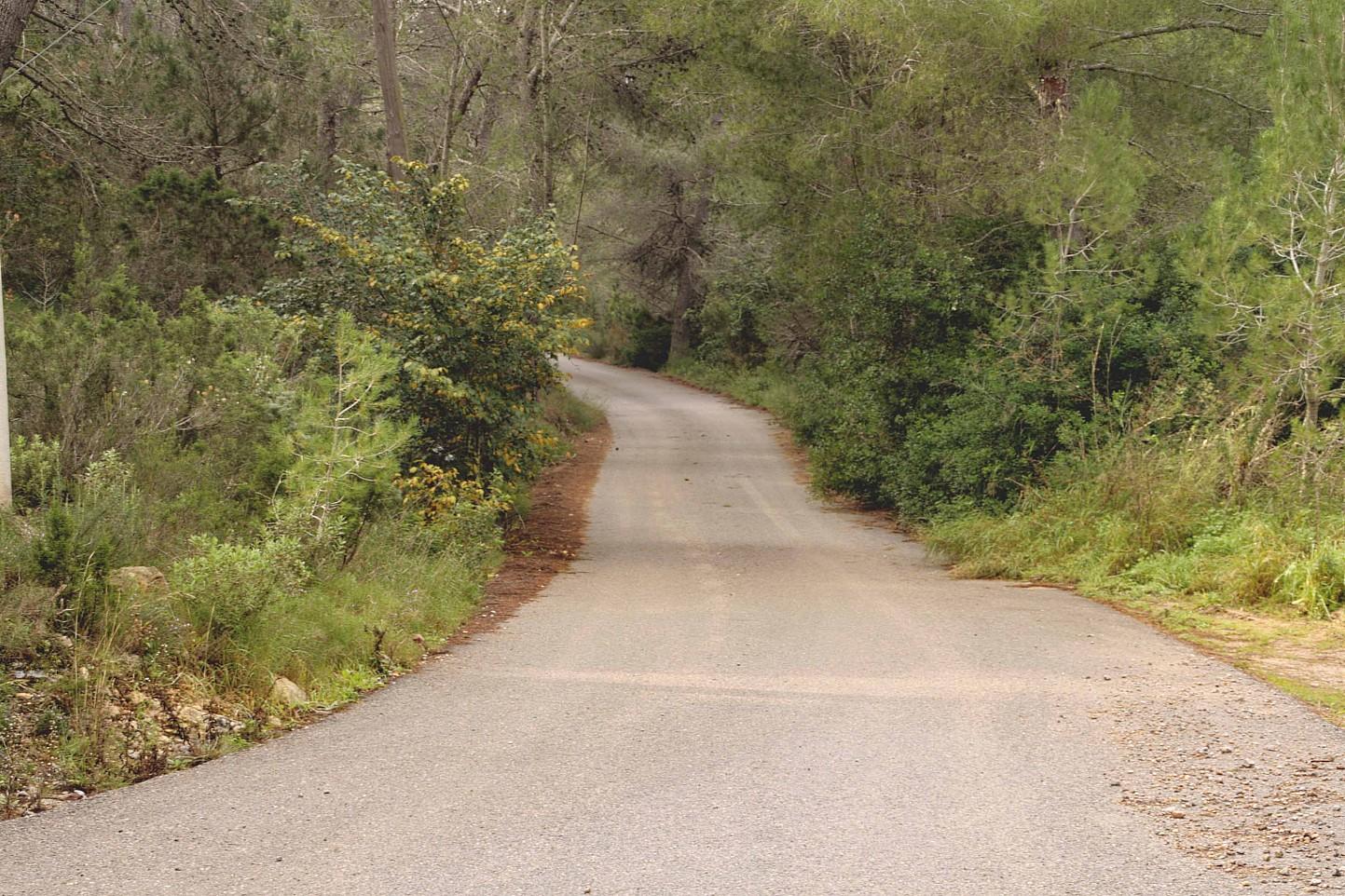 carretera de acceso a terreno en venta en urbanizacion de lujo en Ibiza