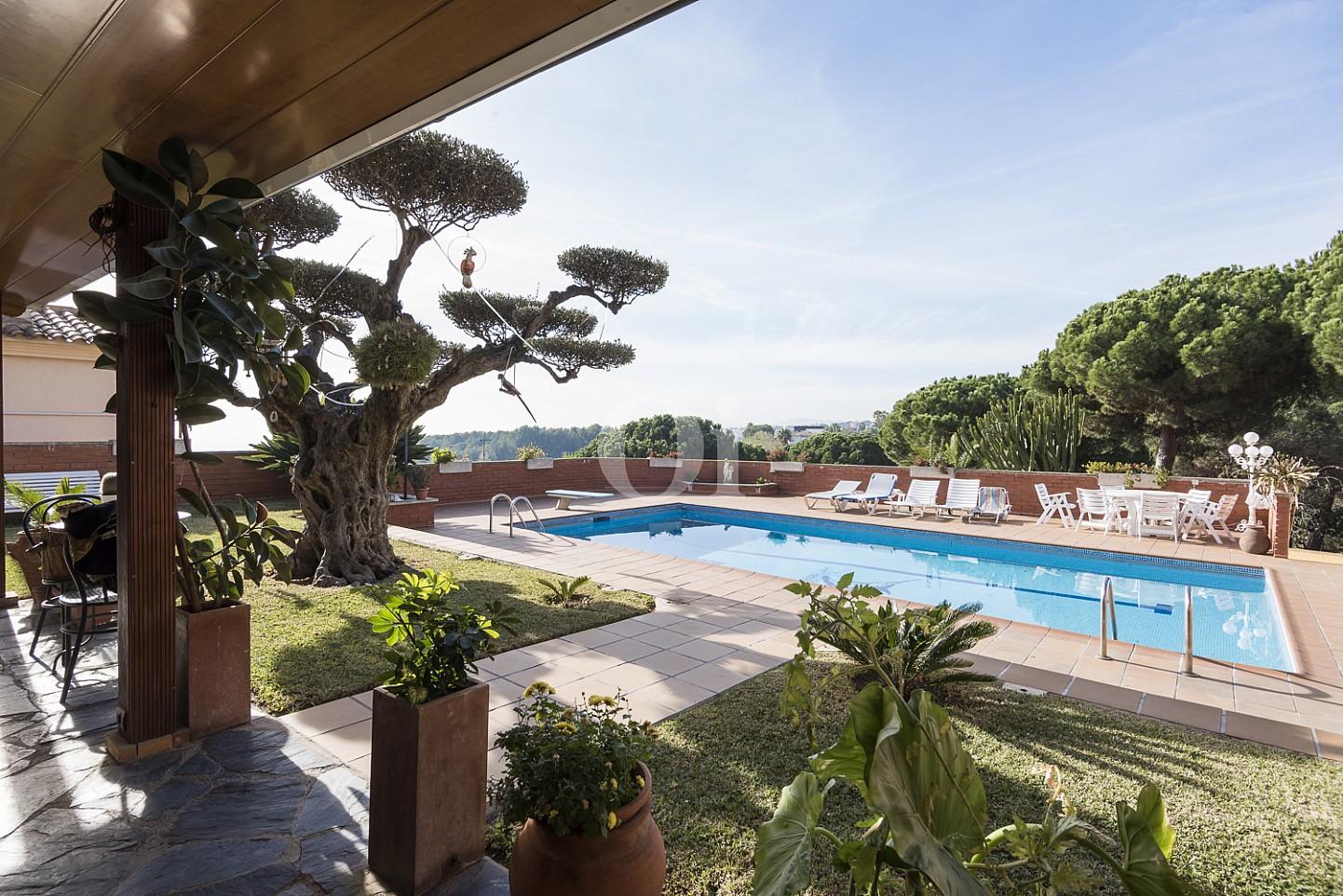 Gran piscina exterior rodeada por un jardín con árboles frutales