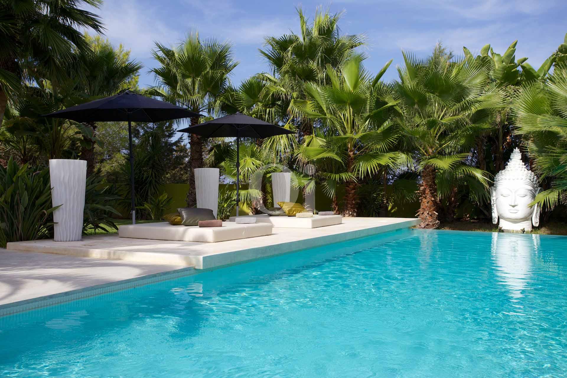 Magnífica piscina amb hamaques