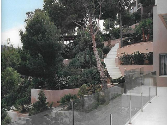 Propietat rodejada pels arbres i el jardí