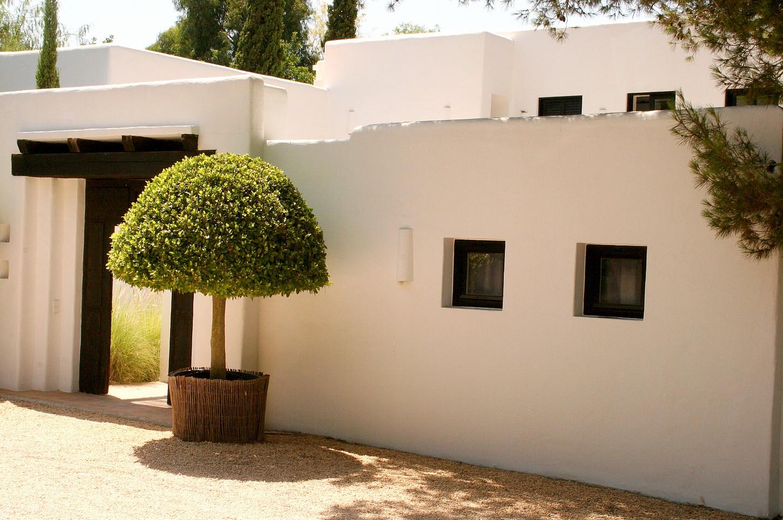 Ухоженный сад виллы в аренду на Ибице
