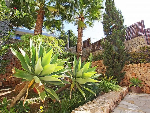 Живописный сад дома в аренду в Марина Ботафок