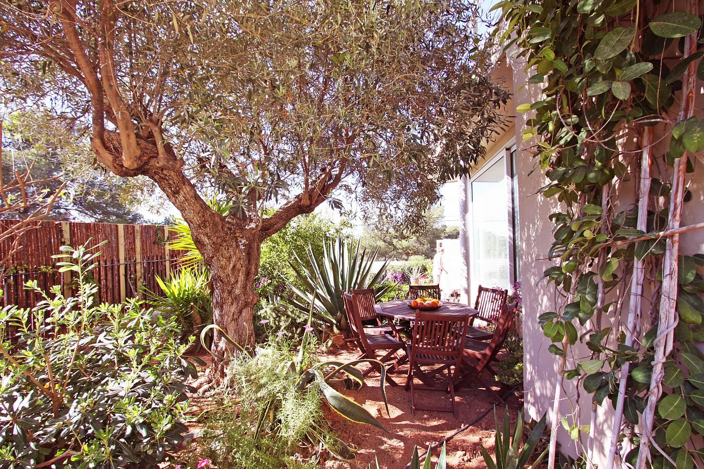 Jardines rodeados de árboles