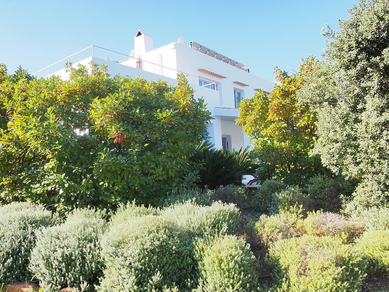 Живописный сад дома в аренду в Сан Карлос