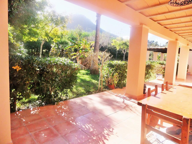 Зеленый сад дома в аренду рядом с Сан Хосе
