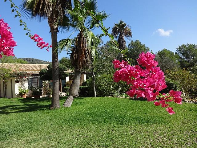Magníficos jardines exteriores
