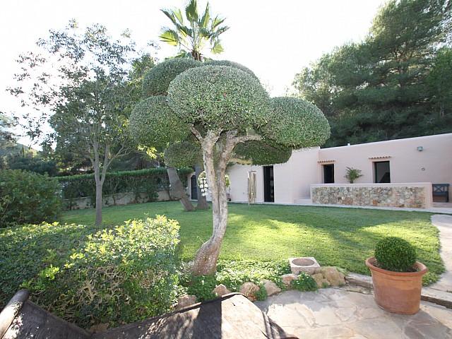 Jardines exteriores con plantas tropicales y árboles