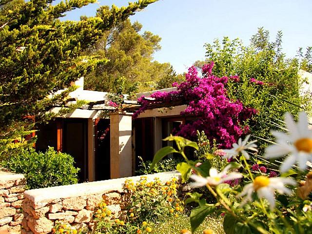 Сад виллы в аренду в Сан Агустин