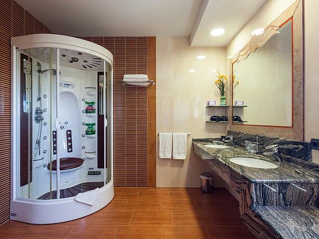Fantástico baño con ducha de hidromasaje