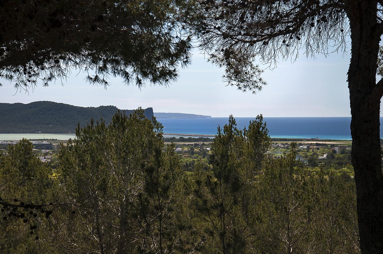 Buenas vistas desde la propiedad
