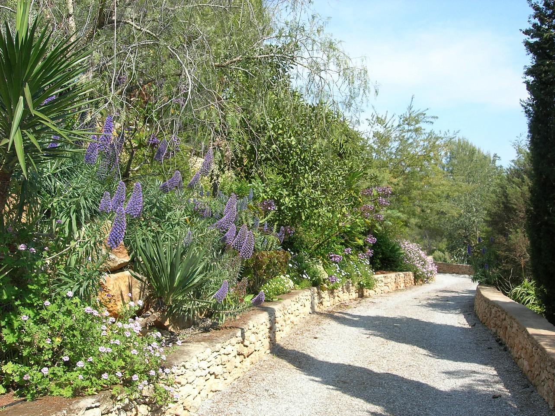 Живописный сад комплекса с 2 виллами в Сан Лоренсо