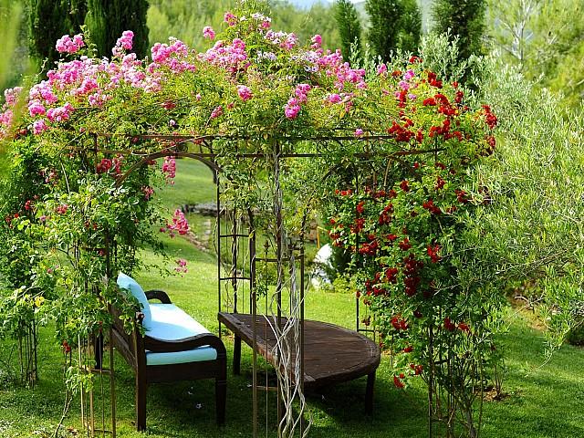 Живописный сад виллы на Ибице