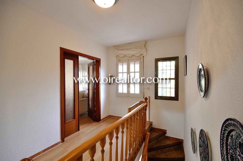 Pasillo, escaleras, pasillo luminoso, suelo de parquet, puerta, puerta con cristal,