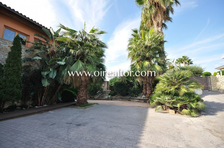 Casa con jardín, casa con palmeras, palmeras, jardín,