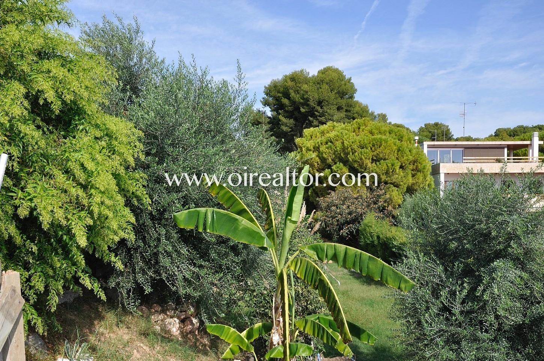 Vegetación, jardín, casa con jardín, casa con árboles