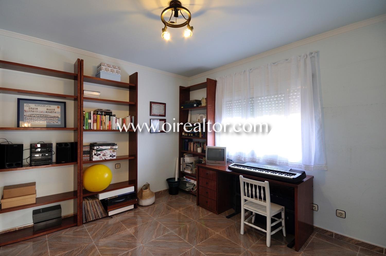 Habitación, despacho, librería, soleado, despacho soleado