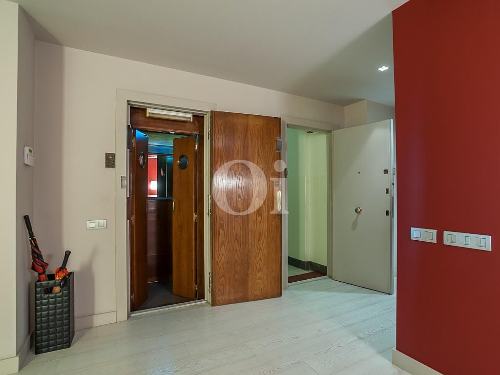 habitación, luminoso, soleado, entrada, puerta,