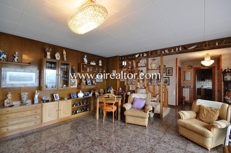 Salón comedor, salón comedor amplio, salón, comedor, salón con salida a terraza, terraza, soleado, iluminado