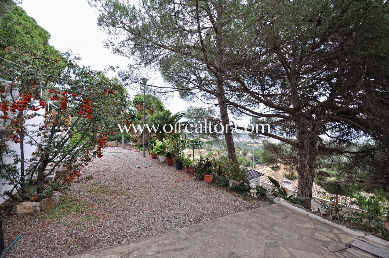 Jardín, vegetación, árboles, plantas,