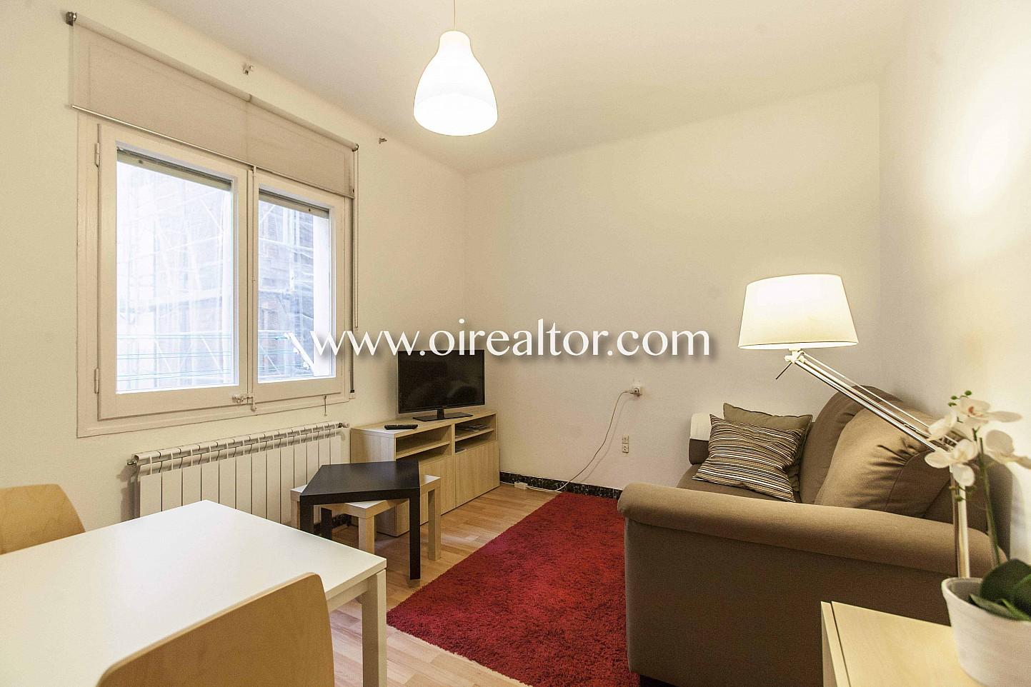 salón, sala de estar, soleado, salón soleado, salón luminoso,
