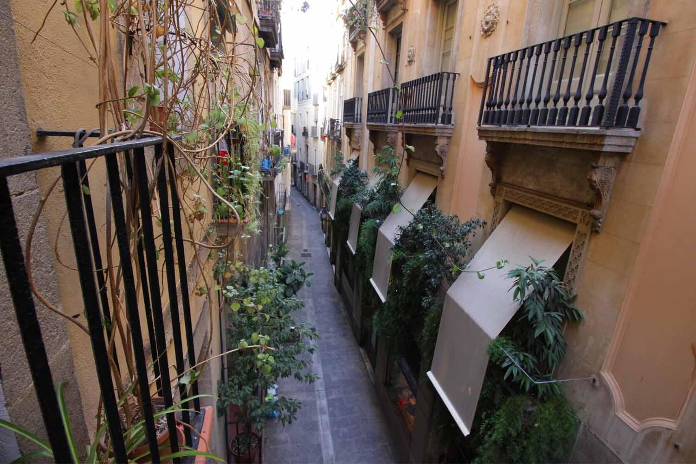 calle, vistas, vistas a la calle, terraza, balcón, plantas