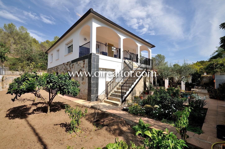 fachada, jardín, plantas, casa, casa de dos plantas, árboles