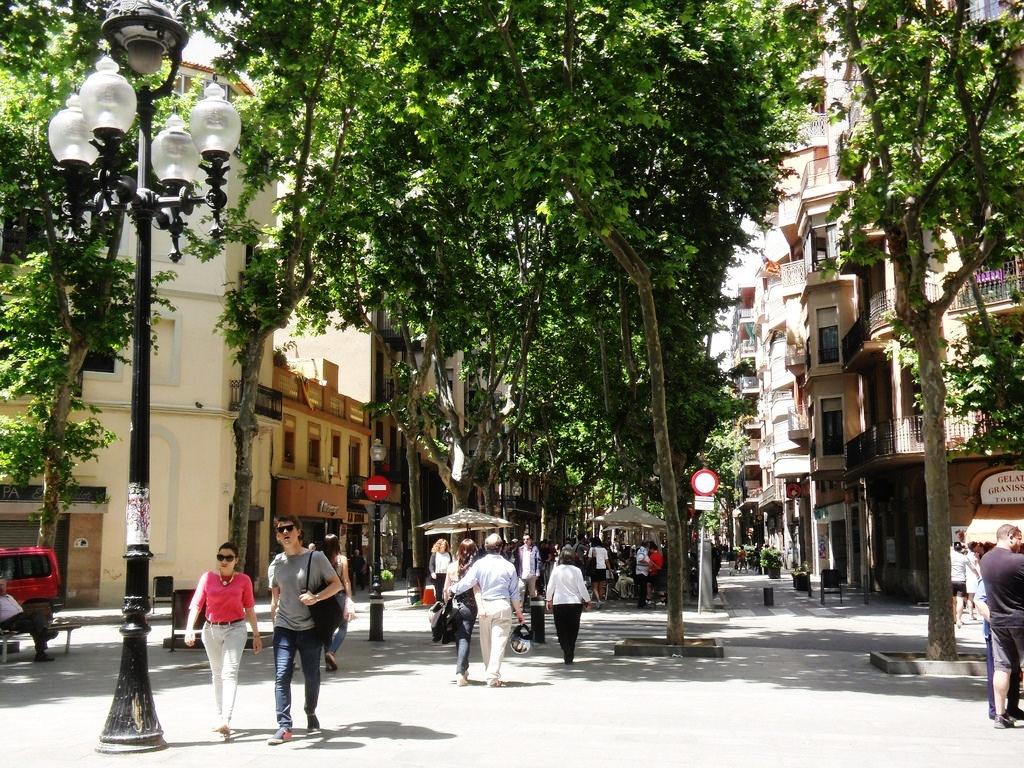 Comprar y alquilar Pisos en Poblenou, Barcelona Capital